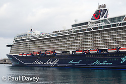 A German liner Mein Schiff I tied up in Funchal Harbour, Madeira. MADEIRA, September 25 2018. © Paul Davey