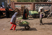 A young woman struggles with a wheelbarrow laden with produce at the weekly market at Qurna, a village on the West Bank of Luxor, Nile Valley, Egypt.
