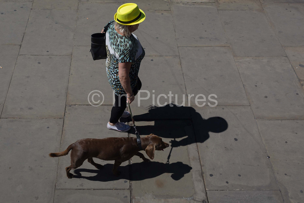 A lady walks her dog over London Bridge in the City of London, the capitals historic financial district, on 2nd August 2018, in London, England.