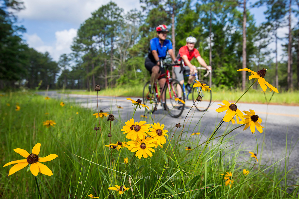 Mike Hopkins and Valli Peacher ride the scenic Longleaf Trail Scenic Byway through the Kisatchie National Forest. Located south of Natchitoches, La. the byway offers natural beauty as well as access to trailheads, camping sites and scenic views in the Kisatchie Hills area.