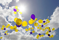 Yellow and purple balloons flying skywards. <br /> Larger JPEGS and TIFFs available. Contact us via  www.photograhy4business.com