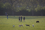 As the Easter Bank Holiday weekend begins and the UKs Coronavirus death toll rises to 7,978 with 65,077 cases testing positive by the end of the UK governments second week of lockdown, Londoners take their daily exercise while practicing social distancing in warm sunshine in Ruskin Park, a south London green space, on 9th April, in London, England.