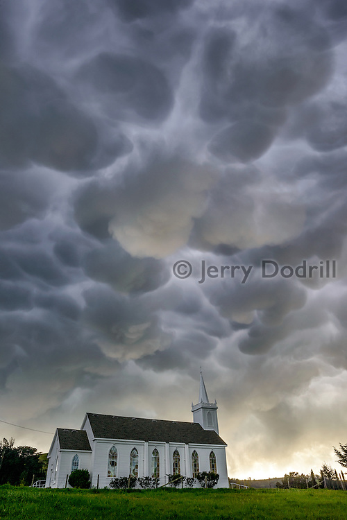 Mammutus clouds form over St. Theresa of Avila Catholic Church during a spring storm in Bodega, California. The church and neighboring Potter Schoolhouse were included in Alfred Hitchcock's 1963 thriller The Birds.