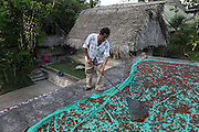 """Luciano Sho, 52, cacao grower from San Antonio, rakes drying cacao beans on his patio. Mr. Sho switched from rice farming in 2004 and joined the TCGA in 2005. He now has 17,000 cacao trees and is one of the organization's most successful members. """"Thanks to the TCGA and Fair Trade for providing us great benefits. I have 13 children and many have been granted Fair Trade scholarships. I am very proud to belong to the TCGA."""" Toledo Cacao Growers' Association (TCGA), San Antonio, Toledo, Belize. January 28, 2013."""