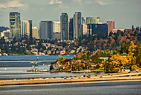 Bellevue Skyline & Lake Washington (Day)