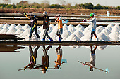 The Salt Farmers of Samut Songkhram