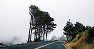 The curving Highway 1 road sweeps along the foggy Mendocino coast