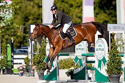 Van Es Danny, BEL, Boudoir De Diamant ED<br /> BK Young Horses 2020<br /> © Hippo Foto - Sharon Vandeput<br /> 6/09/20