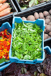 Basil and other crates of freshly harvested produce at De Kas Restaurant, Amsterdam