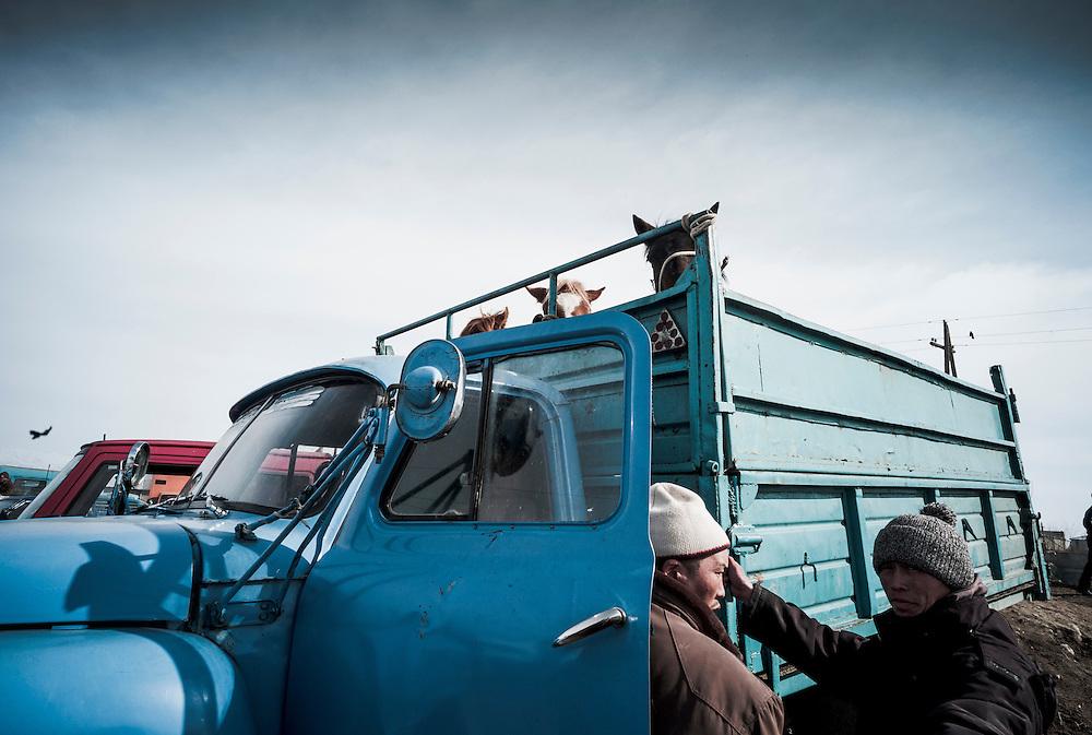 The weekly animal market in Karakol, Kyrgyzstan.