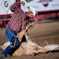 070214       Cable Hoover<br /> <br /> Jeff Frizzell knots his calf's legs in the tie-down roping of the Senior Pro Rodeo at the Grants Rodeo Grounds Wednesday.