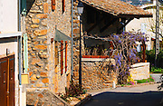In Condrieu: old stone houses and a blue Wisteria sinensis blue flowers wistaria Condrieu, Rhone, France, Europe