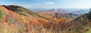 Blue Ridge Parkway, North Carolina.    Somewhere in North Carolina I pulled over again.   I was chasing color.  After peak in New England, I was finding it south in longitude and down in elevation.   Far below me, as Carolina stretched southward, the color was as intense as it can get, autumn receding into the gaps and drainages a trhousand feet down.  I will get down there; I'm nearly on top of this part of the world, and there's nowhere to go but down.  I chase color, and I chase sunrises, sunsets, weather, seasons, time, life, and my heart.  And so do they all chase me.  Looking for inspiration, I stared into summer's end until it made my eyes water, as endings usually do.