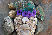 Still Life Photography. Reiki spa flower photography.