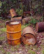 Abandoned 55-gallon drums left between the late 1930s through the 1940s by the U.S. Army Air Force and redistributed by Koyukuk River floods in woods downstream from Old Bettles, Alaska
