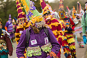 Cajun Mardi Gras revelers during the Faquetigue Courir de Mardi Gras chicken run on Fat Tuesday February 17, 2015 in Eunice, Louisiana. The traditional Cajun Mardi Gras involves costumed revelers competing to catch a live chicken as they move from house to house throughout the rural community.