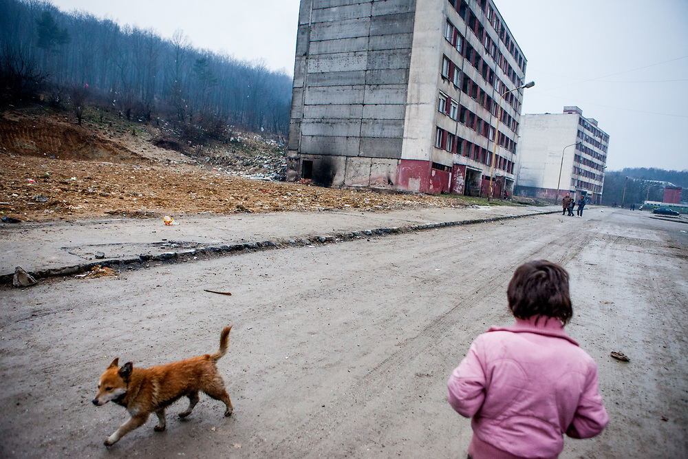 """A child and a dog walking """"Hrebendova Street"""" at Lunik IX. On the left side is a huge blank gap where was standing a decrepit building which was demolished by the city of Kosice in the end of 2013. The building was torn down by the city out of security reasons. Lunik IX is populated with almost 100% Roma inhabitans and in the western-central part of the city of Kosice located in Eastern Slovakia."""