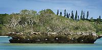 Isle de Kuto - Isle de Pins, New Caledonia