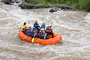 Rafters challenge whitewater on the Rio Grande River