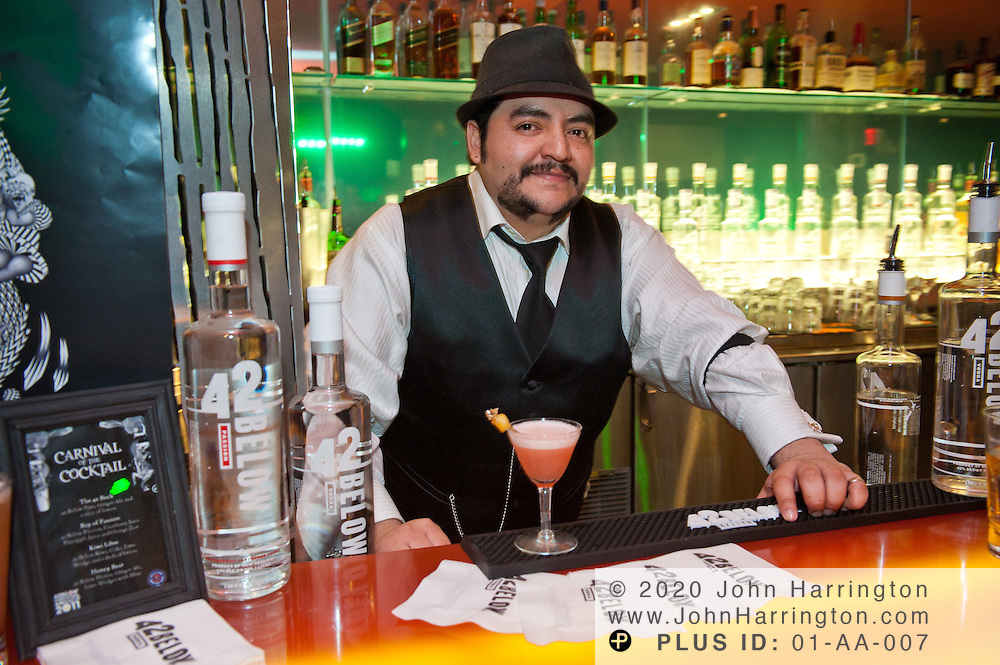 """JP Caceres , finalist in the East Coast regional competition of the 2011 42BELOW Cocktail World Cup mixes his winning drink """"I'm NOT An Apple Martini"""". Caceres, representing AGAINN Gastropub in Washington, D.C. will join Gina Chersevani of PS7's in the national round of competition in New York City on February 13th. In its seventh year, the 42BELOW Cocktail World Cup """"Carnival of the Cocktail""""run by the United States Bartenders' Guild welcomes mixologists from around the world to compete for the chance to represent their country in the final stage in New Zealand."""