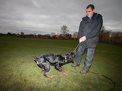 © Licensed to London News Pictures . 13/11/2012 . Manchester , UK . Adey Jones with 18 month old Rottweiler , Buster . Specialist handlers from Greater Manchester Police put police dogs through their paces at a training event . Greater Manchester Police are appealing for members of the public to donate unwanted dogs to the force . Photo credit : Joel Goodman/LNP