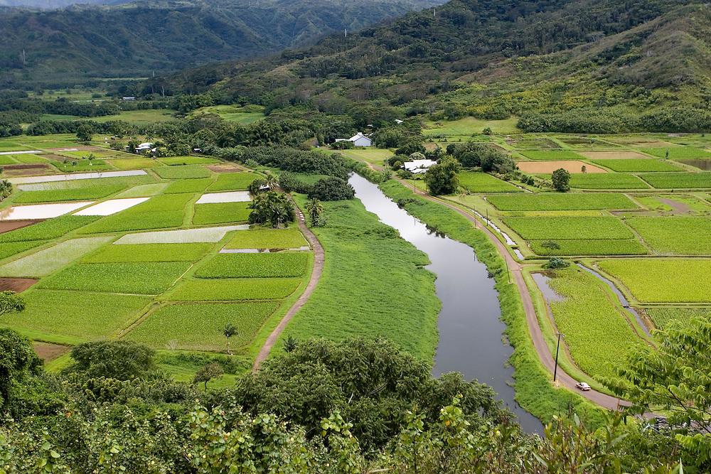 A green valley after a storm.<br /> Un valle de verde resplandeciente después de una lluvia vespertina, teñida de verde por la humedad constante que se respira en la isla de Kauai (Hawai).