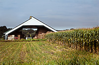 A open air storage structure for hay along side a crop of corn on the grounds of a dairy farm in Mantua Township, NJ.