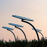 Zonnebloemen voor energie