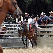 Cameron MacDonald from WInton in action during the Open Bareback competition at the Southland Rodeo, Invercargill,  New Zealand. 29th January 2012