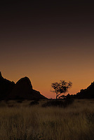 Silhouette of a tree,Spitzkoppe at Sunset, Namibia