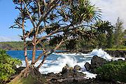 Keanae Peninsula, Hana Coast, Maui, Hawaii