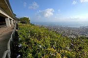 Israel, Haifa, a view of downtown and the bay from the Carmel Mountain