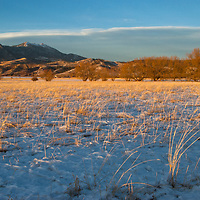 Sunset light bathes a pasture in Montana's Gallatin Valley near Bozeman.  Mount Baldy and the Bridger Mountains are behind.