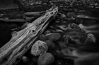 Merced River Meditation. Image taken with a Nikon D3 camera and 24-70 mm f/2.8 lens (ISO 200, 52 mm, f/16, 2.5 sec). Camera mounted on a tripod. Monochrome Version.