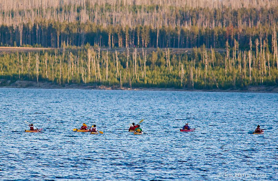 Sea kayaks on Yellowstone Lake in Yellowstone National Park in Wyoming