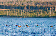 Sea kayaks on Yellowstone Lake in Yellowstone National Park in Wyoming
