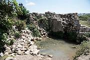 Zippori Spring. This spring, located near the ancient city of Sepphoris (Zippori) in the Galilee, Israel was the main source of water to the city