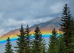 United States, Washington, Crystal Mountain, rainbow in valley throug trees
