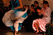 Flamenco dance in Zambra Los Tarantos Bar / Camino del Sacromonte Street / GRANADA / Andalusia Region / Spain. Route by train after the steps of Washington Irving, romantic American writer who travelled in 1829 from Seville to Granada, where he wrote 'Tales of the Alhambra'. Fascinated by the wealth and exoticism of the Spanish-Muslim civilization, Irving was responsible, along with the French writers of the 19th century, for the romantic image of Al-Andalus. Alberto Paredes / 4SEE