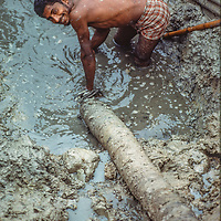 Laborers wrestle with a pipe as they help dig a fish pond to help feed their neighbors at Mirpur Destitute Camp near Dhaka, Bangladesh, a population left homeless after a cyclone and 1971 war of indepence.