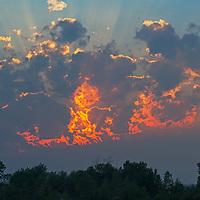 A sunset glows trees near Bozeman, Montana.