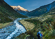 Glacier-clad 2620m Mt Edward rises above the Dart Valley on a spectacular day hike from Dart Hut to Cascade Saddle, in Mount Aspiring National Park, Otago region, South Island of New Zealand.