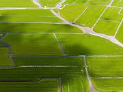 Nederland, Noord-Holland, Gemeente Schermer, 16-04-2012; Polder Mijzen met riviertjes en sloten. De polder is een aardkundig monument doordat het laagveen (mosveen) nagenoeg onaangetast is. .Polder Mijzen, a geological monument, the bog (moss) is virtually untouched.luchtfoto (toeslag), aerial photo (additional fee required);.copyright foto/photo Siebe Swartt