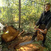 Prisoner at work in prison logging camp, Siberia.  Accession #: 0.94.181.001.08