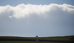 © Licensed to London News Pictures. 22/03/2014<br /> <br /> Middleham, North Yorkshire<br /> <br /> Race horses exercise on the horse racing gallops in Middleham, North Yorkshire. Race horses have been trained in Middleham for over 200 years using the extensive gallops on the high moor. There are currently 15 stables based around the small Yorkshire village.<br /> <br /> Photo credit : Ian Forsyth/LNP