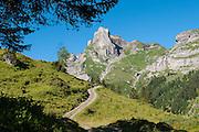 Berglandschaft mit Schwalmere und Hogarithorn