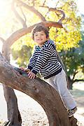 Nico climbing tree at Fairyland