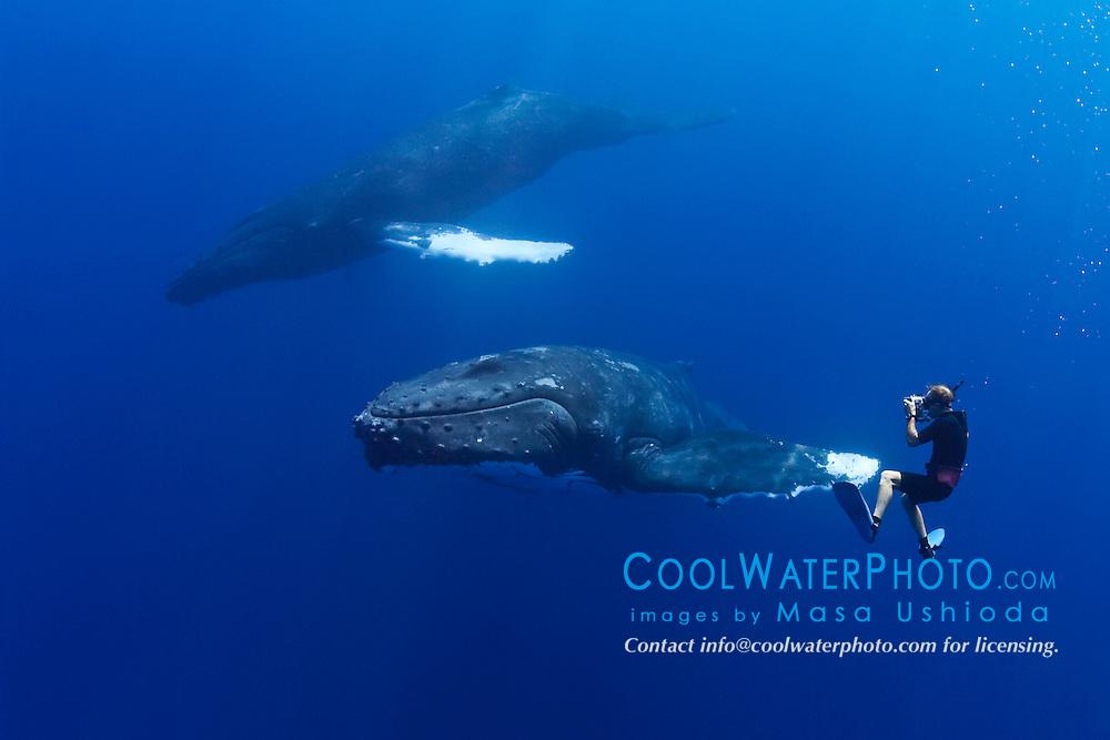 wildlife photographer James D. Watt photographing humpback whales, Megaptera novaeangliae, Pacific Ocean, Model Released - MR#: 000044