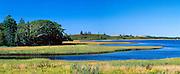 Salt Marsh At Arcadia, Nova Scotia, Canada