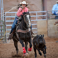 062014       Cable Hoover<br /> <br /> Renee Tolino chases down her calf in the breakaway roping of the Lions Club Rodeo at Red Rock Park in Gallup Friday.